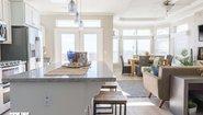 Amber Cove Premier Custom 239J Kitchen