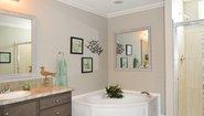 Spring View 6893 Bathroom