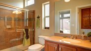Builder DBS-1173A Bathroom