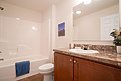Blue Ridge MAX Grayson Max 25 1B1001-L Bathroom