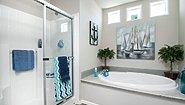Infinity Flex The Pinnacle Plus - 51IBK44704AH Bathroom